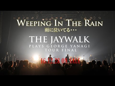 WEEPING IN THE RAIN〜THE JAYWALK PLAYS GEORGE YANAGI TOUR FINAL at Akasaka BLITZ