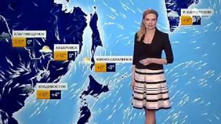 Погода сегодня, завтра, видео прогноз погоды на 3 дня 14.4.2017