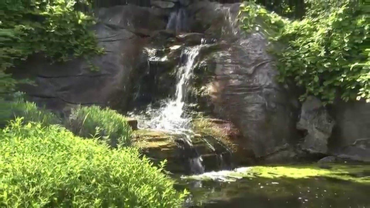 Bleu Garden Un bassin de jardin au paradis - YouTube