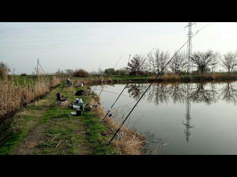 Рыбалка на Карася и Сазанчика
