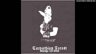 Watch Carpathian Forest Bloodcleansing video