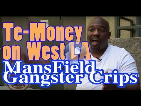 Te-Money from West LA talks about Dollas tragic de.mp3