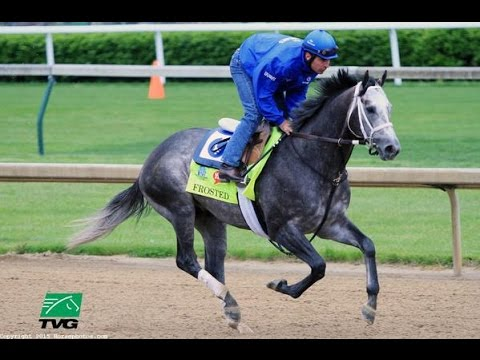 RACE REPLAY: 2015 Pennsylvania Derby at Parx