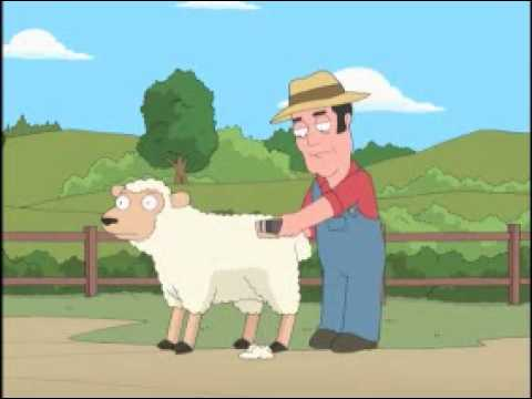 Seth MacFarlane sheep shearing
