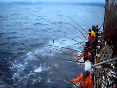 чудо рыбак играть
