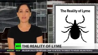 Lyme disease-carrying ticks now in almost half of US