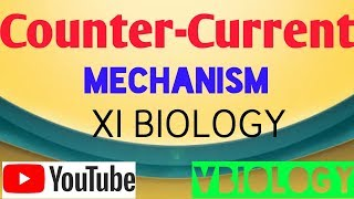 Counter-Current Mechanism || Excretory System || NEET ,CBSE|| Vinay Biology