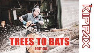 From Trees to Cricket Bats   - Part One How We Produce Clefts
