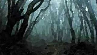 Watch Alan Jackson The Firefly