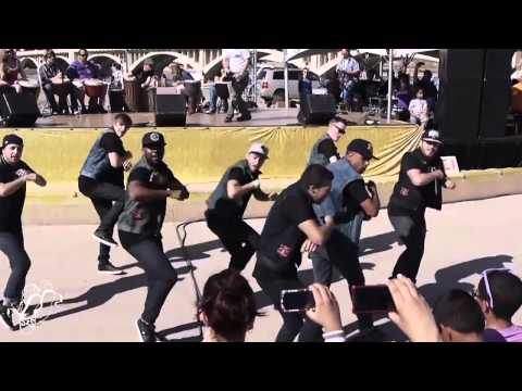Elektrolytes Performance | MyFest 2013 | Step x Step Dance