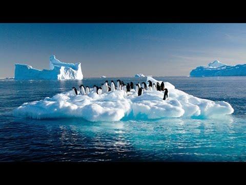Antartica Hits Record Setting Temperature