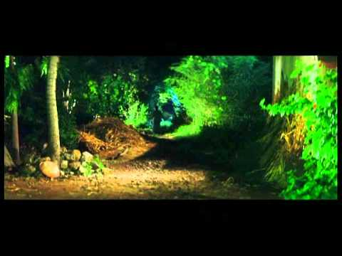 Devotional Marathi Songs - Dhaav Ghey Ambe - Ude Ga Ambabi -...