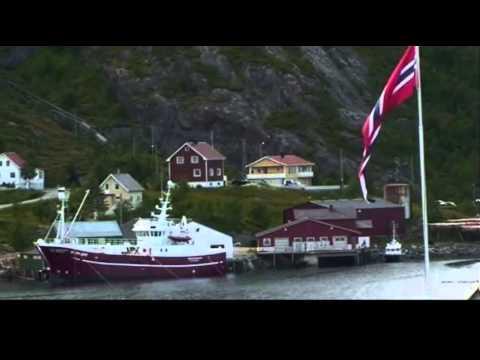 International Marine Mammal Conservation Society - Operation Whale Defense 2013-14
