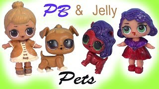 PETS LOL Surprise Peanut Butter & Jelly BFF DIY Craft Makeover Painting Video