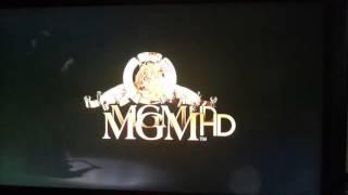 MGMHD - Fragment przerwy technicznej - 21.01.2014