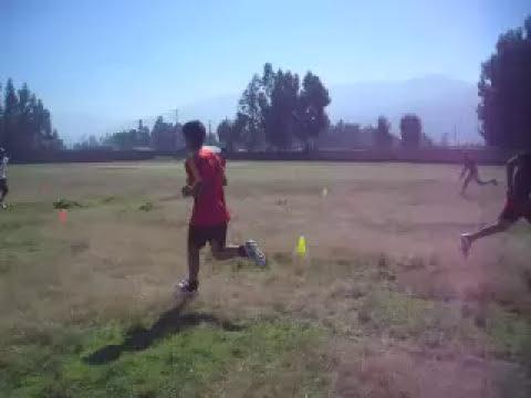 Ejercicios Pliométricos para desarrollar la Velocidad en el Fútbol
