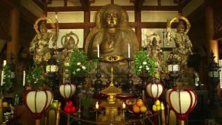 木津川市プロモーション映像「きづがわいい」ダイジェスト