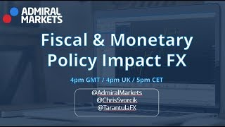 How do Fiscal and Monetary Policy Impact the Forex & Financial Markets