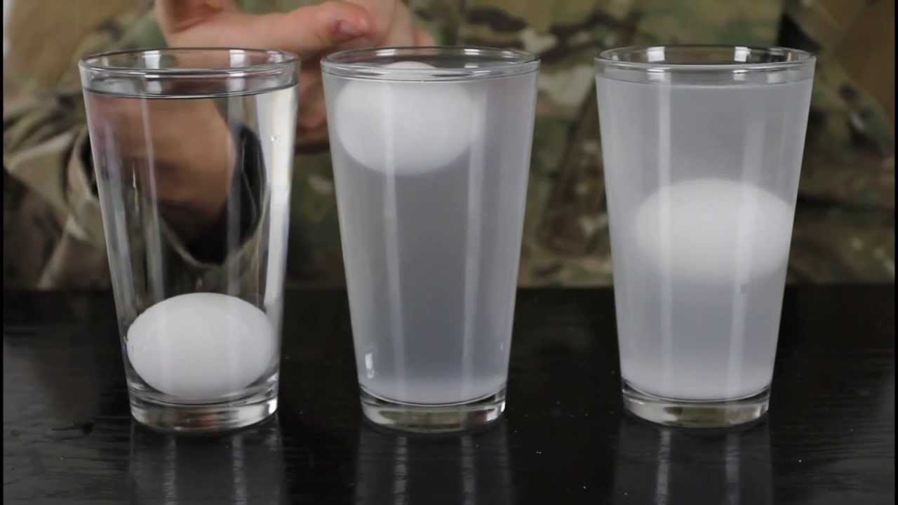 Eggs & Salt Water - Water Density Science Experiment - YouTube Physics Black And White