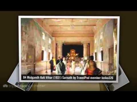 Sarnath - Varanasi, Uttar Pradesh, India