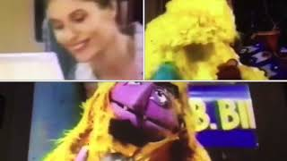 Sesame Street Episodes 3797, 3836, 3857, and 3899 Ending Scene Remix