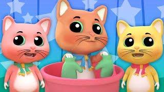 ba chú mèo con nhỏ | bài hát mèo | nhac thieu nhi hay nhất | Three Little Kittens | Kids Tv Vietnam