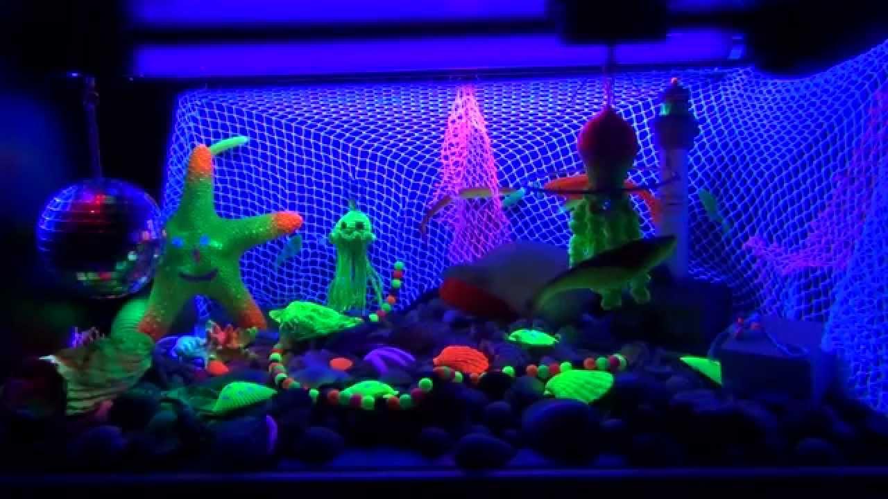 Snoezel Aquarium Blacklight Box. - YouTube