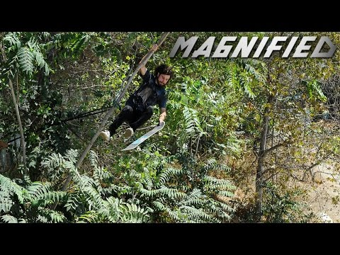 Magnified: Dave Mull