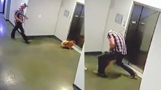 Dog Rescued as Elevator Doors Shut On Leash