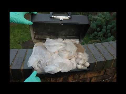 Criminal gang sentenced for supplying £100 million of drugs