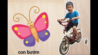 Bé Bo Chơi Trò Chơi Ghép Hình Con Bướm vs Bọ Cạp - Animal Names Puzzle Butterfly Scorpion  - BVA TV