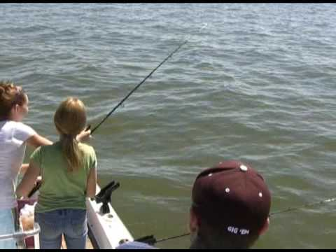 Stripe Bass Fishing Lake Texoma
