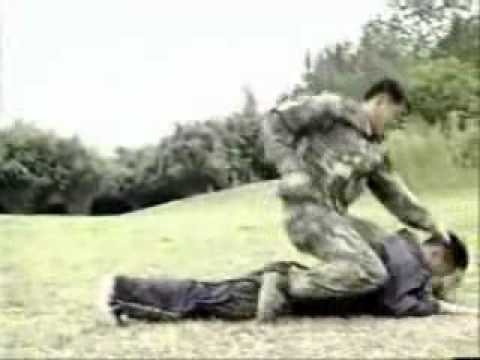 Realistic Combat Form of Sanshou Kungfu Part2 Image 1