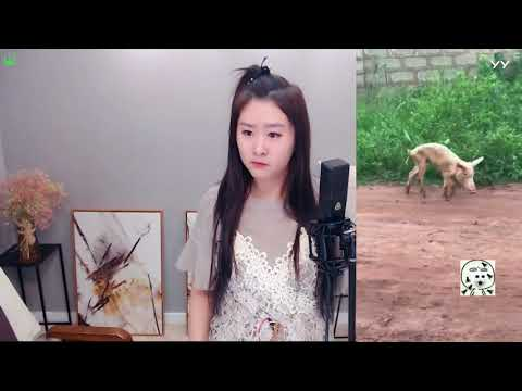 中國-菲儿 (菲兒)直播秀回放-20180516