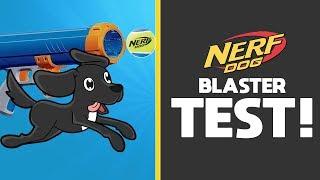 Testing The Nerf Dog Tennis Ball BLASTER!