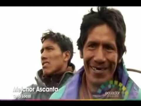 Osos y Tapires en la Cuenca de Papallacta, Ecuador