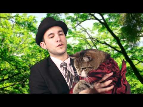 Catsterpiece Classics Presents - Downton Tabby