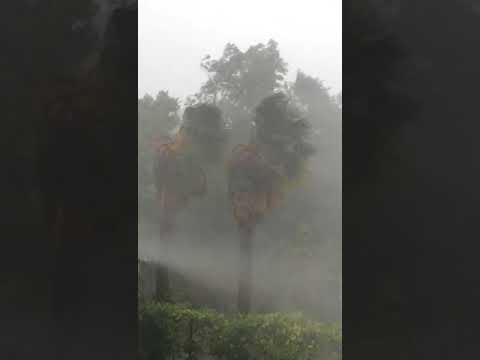 Ураган в Аб
