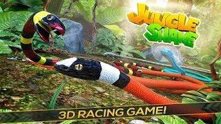 Chơi Jungle Snake Con Rắn trong rừng chạy đua lụm vàng cu lỳ chơi game lồng tiếng vui nhộn