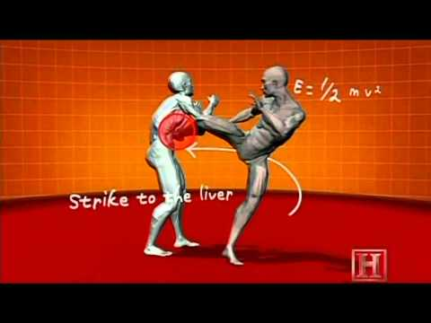 The Human Weapon  Savate Street Fighting Pointe Au Foie   Directe Visage Image 1