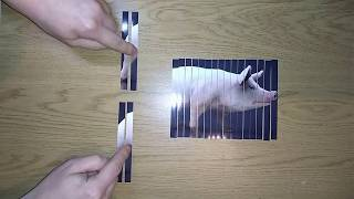 AMAZING Shredding a photo SCIENCE EXPERIMENTS Compilation