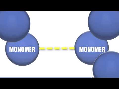 Monomers vs Polymers - Biology Tutorial thumbnail