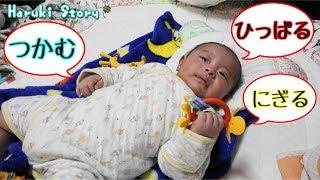 赤ちゃん つかむ・にぎる・ひっぱる練習 生後三か月 - 日台ハーフ赤ちゃん・ハルキの成長記録