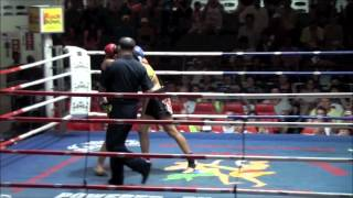 Cat Zingano Pro Thai Boxing Fight