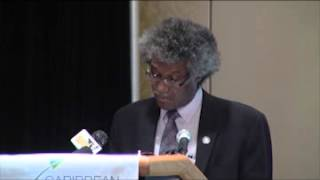 Central Bank's Governor Dwight Venner Addresses CGF