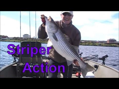 Striper & Muskie Fishing on the Saint John River, Fredericton, New Brunswick Canada