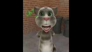 Gato Tom Cantando Ai Se Eu Te Pego