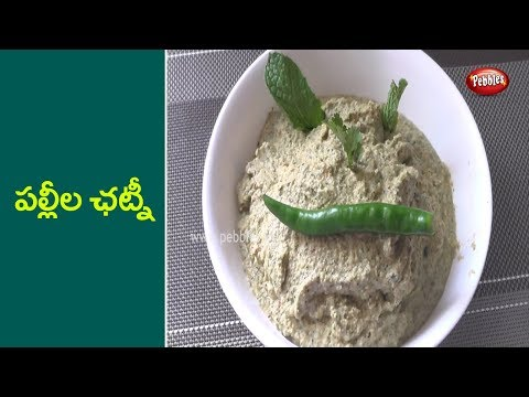 How to Cook Peanut Chutney in Telugu | పల్లీల ఛట్నీ| తెలుగులో