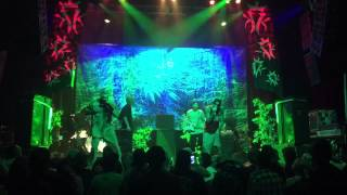 Watch Kottonmouth Kings SubNoize Rats video