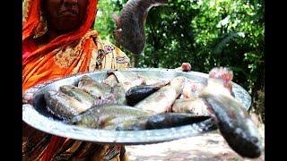 Village food Koi vapa recipe | Climbing fish ash gourd leaves recipe